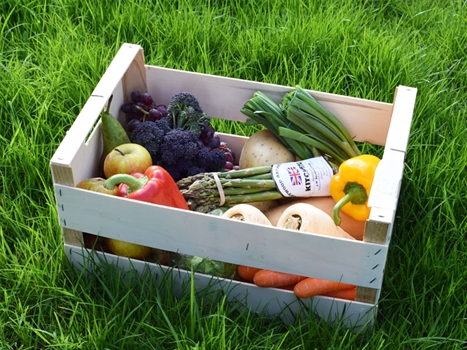Box E - 7 Veg + 3 Fruit